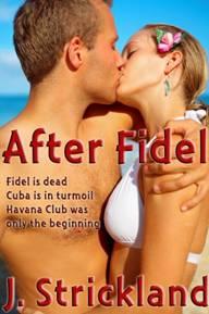 After Fidel ebook cover.jpg